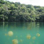 ¿Cuánto sabes de lagos?