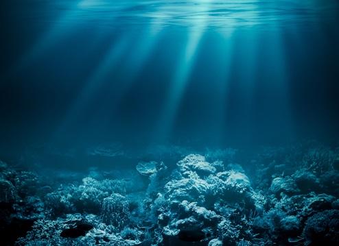 ¿Cuánto sabes de océanos?