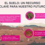 El suelo: un recurso clave para nuestro futuro