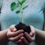 Claves de la COP25: avances contra el cambio climático