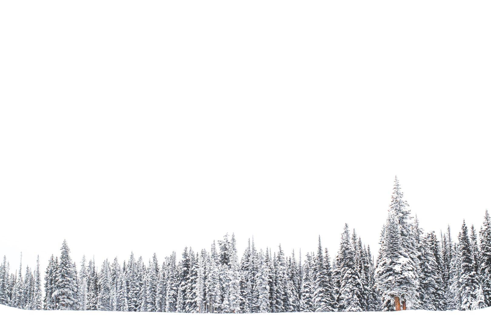 cuestionario nieve
