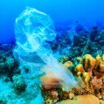 Un doctorado para aportar soluciones a los microplásticos