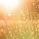 Primaveras tempranas y veranos secos por calentamiento global