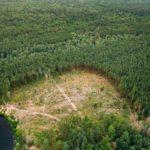 Descubre las causas y consecuencias del cambio climático