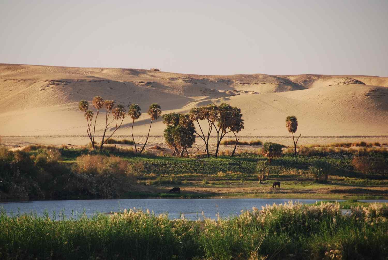 Escasez de agua en el Nilo para millones de personas