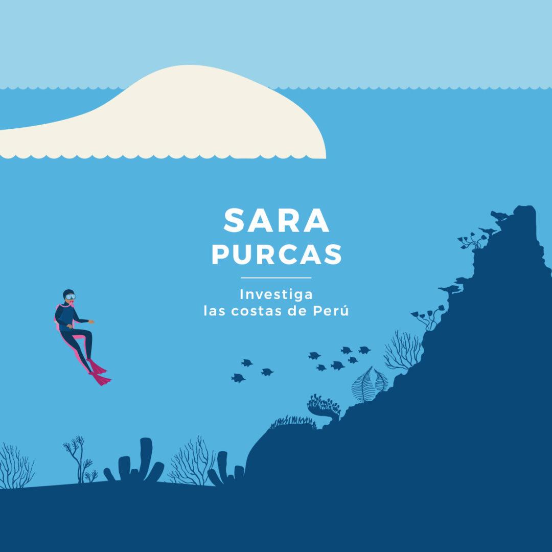 Sara Purcas