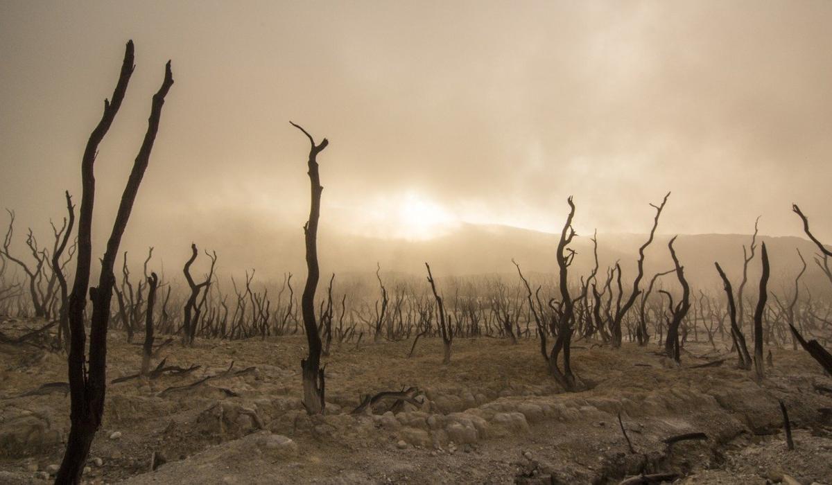 ¿Cuánto sabes sobre agua y cambio climático?