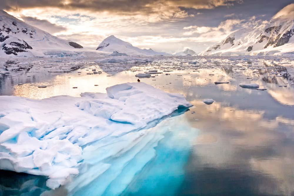 Carlota Escutia, Antártida