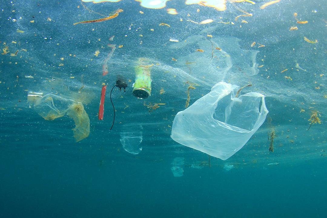 Evitar los plásticos ayuda a mitigar los efectos del cambio climático