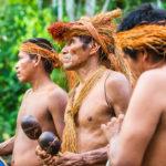 Las regiones indígenas del Amazonas se enfrentan a una situación crítica debido a la expansión de la pandemia