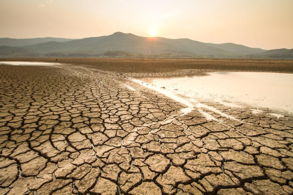 El aumento de las temperaturas y las sequías prolongadas es uno de los efectos más inmediatos de la crisis climática, según el Programa del Medio Ambiente de las Naciones Unidas
