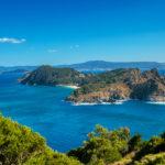 La rica biodiversidad de las islas Cíes dotan al archipiélago gallego de un gran valor científico