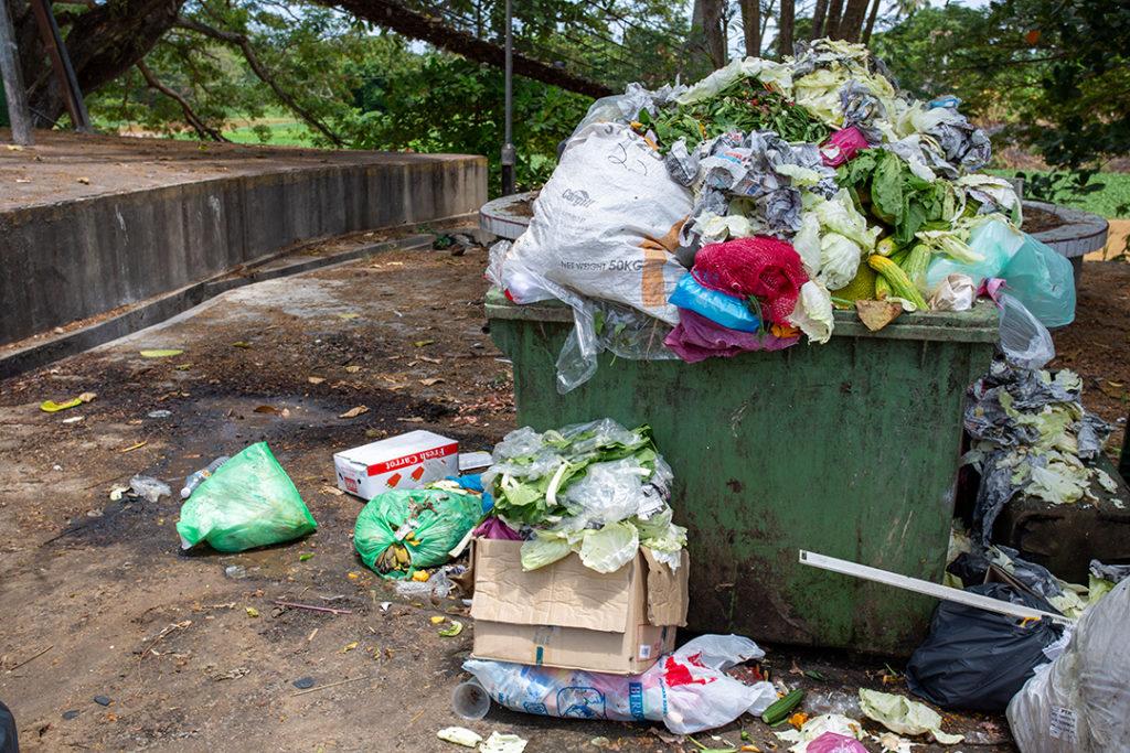 Evitar el desperdicio de alimentos supone luchar contra un problema social, pero también ambiental