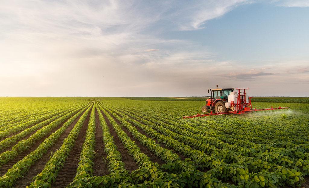 El sector agrícola debe revisar sus prácticas para mitigar los efectos de la producción de alimentos con el fin de evitar el desperdicio de los alimentos