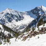Los animales en la nieve son fácilmente perceptibles gracias a sus huellas