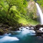 Los parques naturales de Costa Rica convierten al país en uno de los destinos estrellas del ecoturismo