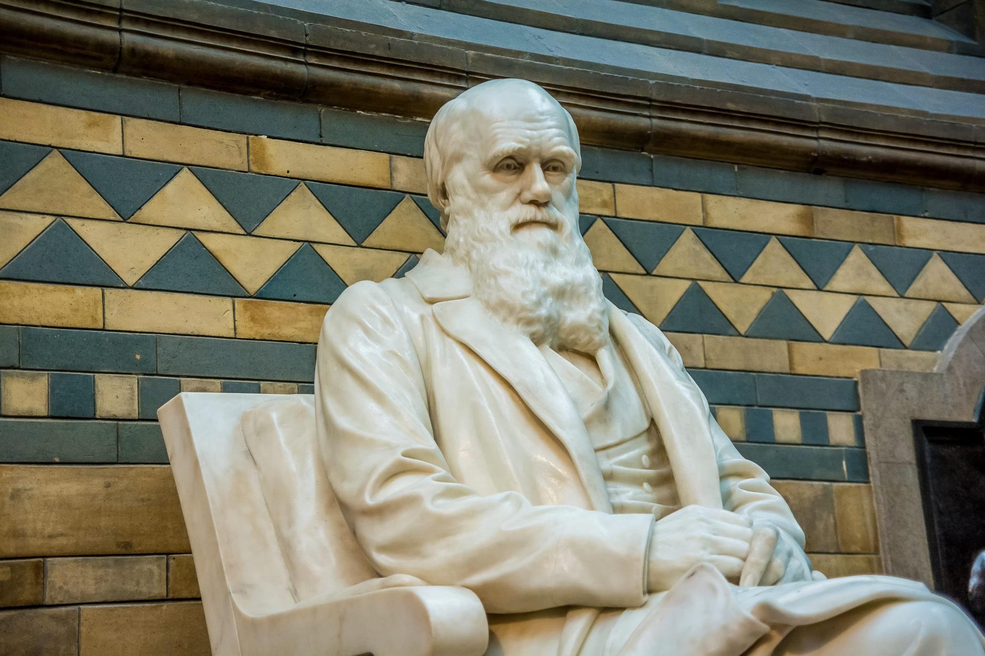 ¿Cuanto sabes sobre las aportaciones de Darwin a la biología? Demuestra que eres todo un experto en la teoría de la evolución de especies