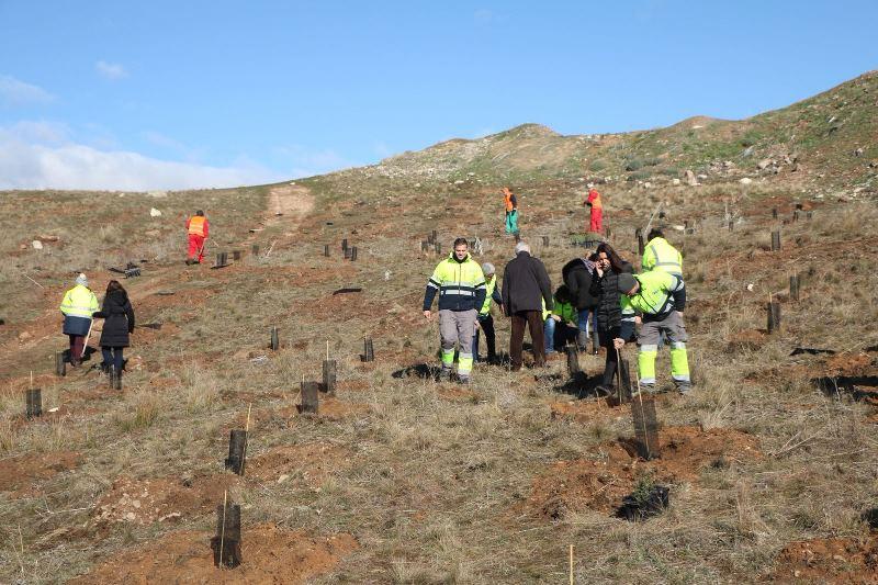 Reforestación en Zamora