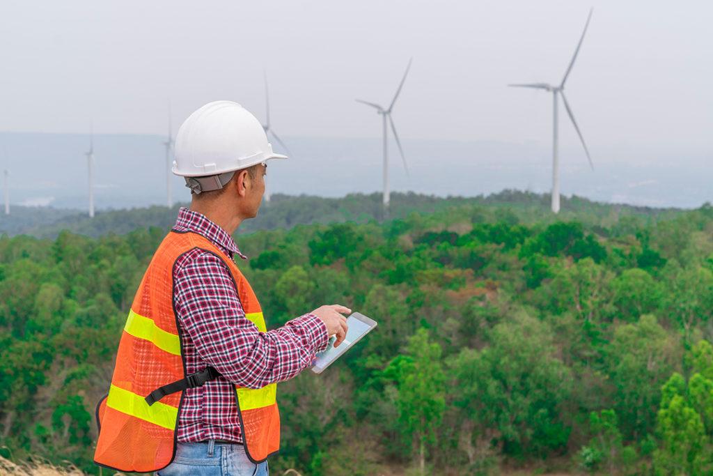 ¿Qué es la declaración del impacto ambiental?