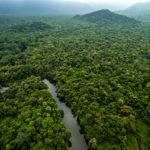 Chicos Mendes fue uno de los ecologistas más importantes que luchó en defensa del Amazonas