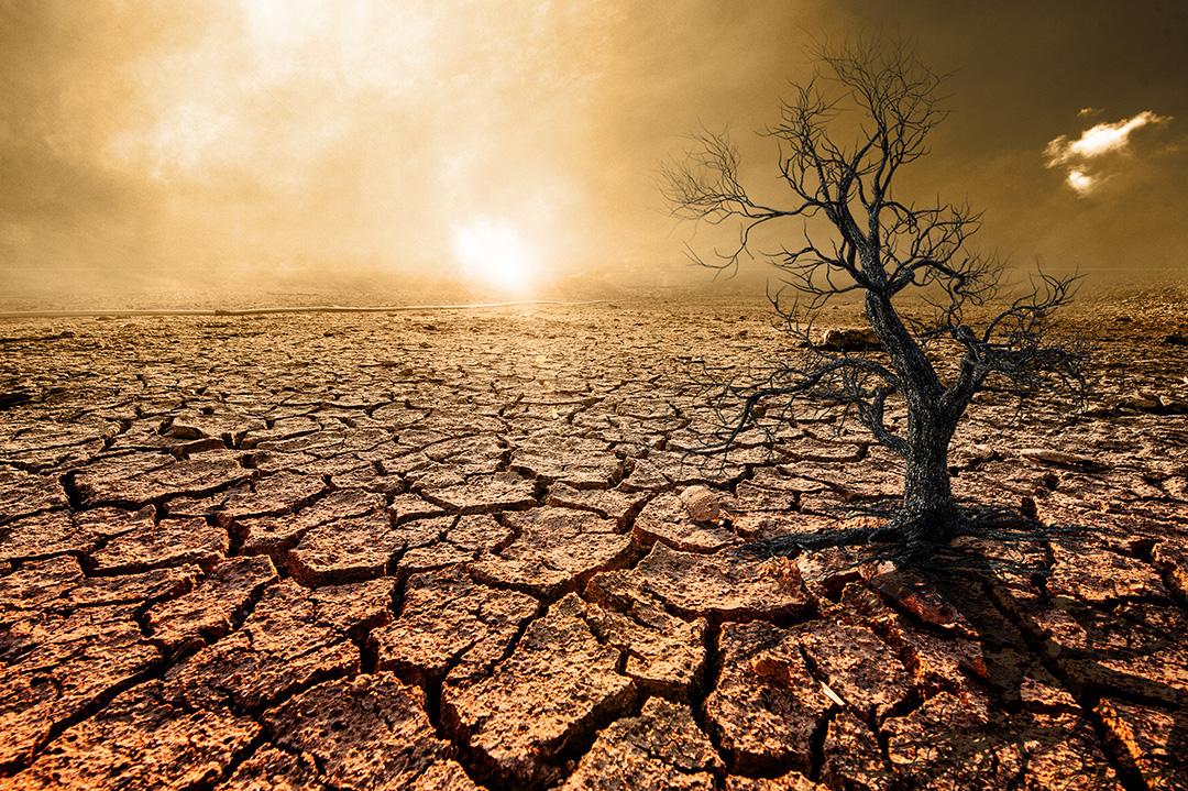 ¿Cuánto sabes sobre la sequía? Ponte a prueba con este quiz